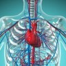 Angiotomografia de Artérias Coronárias